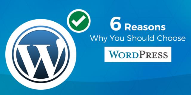 why should choose wordpress
